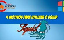 4 Motivos para usar o Squid