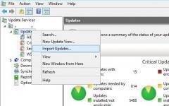 Como importar manualmente atualizações para o WSUS do catálogo do Microsoft Update